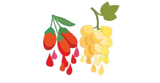Pressed Goji berry Plus Juice - We juice