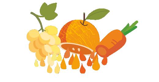 Σταφύλι, Πορτοκάλι & Καρότο plus - Χυμοποιούμε