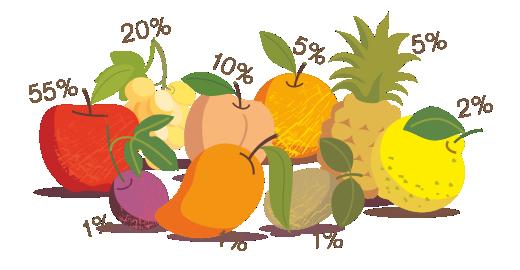 Vitamin Juice 9 Fruits  - We select