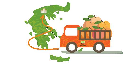 Vitamin Juice Peach - We transport