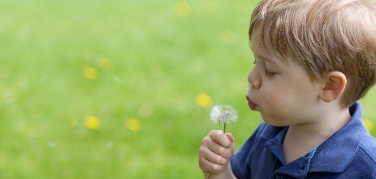 άνοιξη αλλεργία