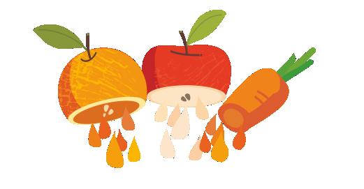 Φυσικός χυμός Μήλο, Πορτοκάλι, Καρότο 2 λίτρων - Χυμοποιούμε