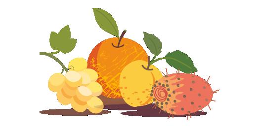 Φρούτα Αργολίδας Plus - Επιλέγουμε