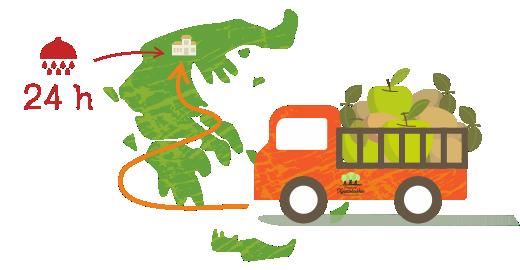 Kiwi & Green Apple Juice - We transport
