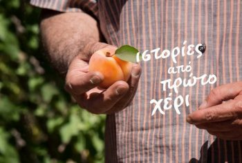 17 July 2020 - First-hand stories - Apricot